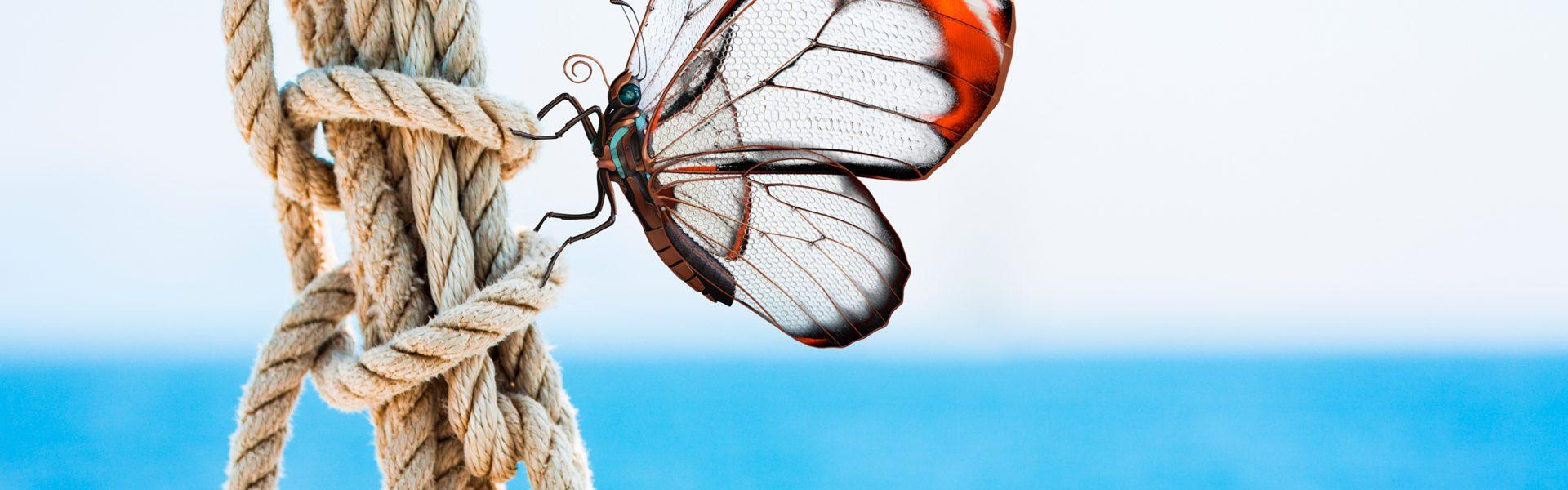 arimeo Fensterfalzlüfter Schmetterling an Seil kleiner